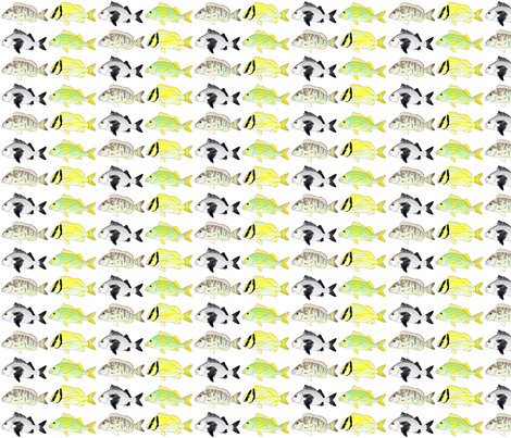4 Grunt Fish fabric by combatfish on Spoonflower - custom fabric