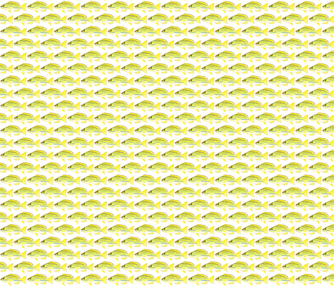 Bluestripe Snapper fish fabric by combatfish on Spoonflower - custom fabric