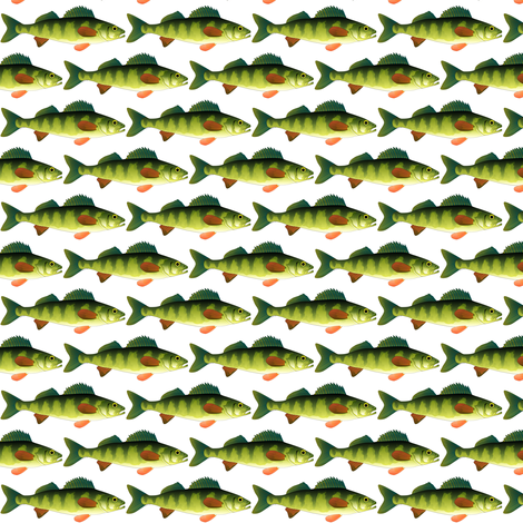 Yellow Perch fish pattern fabric by combatfish on Spoonflower - custom fabric