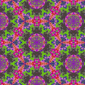leaf kaleidoscope 12