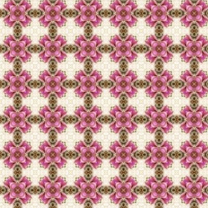 Victorian Pink Check