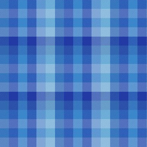 serene blue Madras plaid