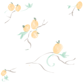 Southern Oranges