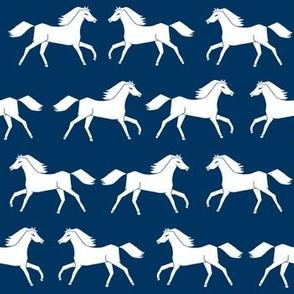 horses // navy blue kids horse farm ranch