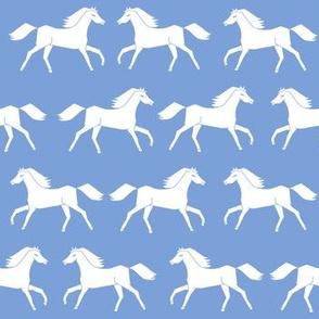 horses // cornflower blue kids blue pastel