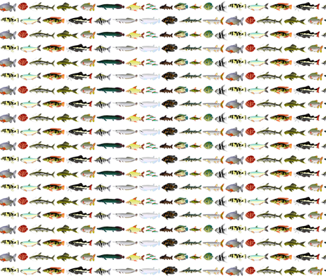 23 Amazon River Fish fabric by combatfish on Spoonflower - custom fabric