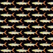 Rrrrtigerfishp_shop_thumb