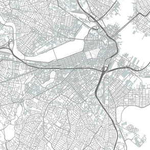 Boston street map with Columbia Point/BC High