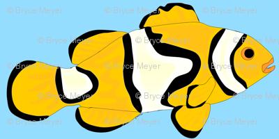 Clownfish in blue