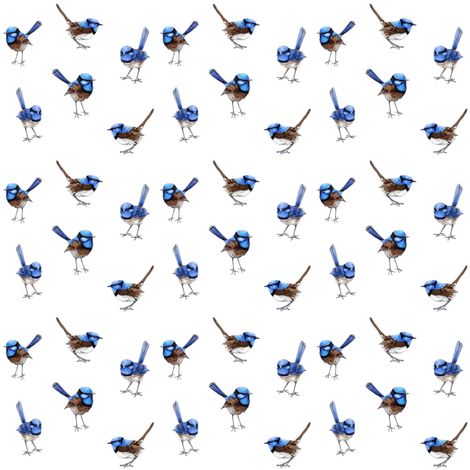 Mini Blue Wren Watercolor Australian Birds fabric by thistleandfox on Spoonflower - custom fabric