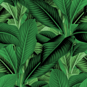 Palm In Palm ~ Jungle Green
