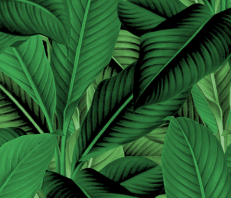 Palm In Palm Jungle Green Fabric Peacoquettedesigns