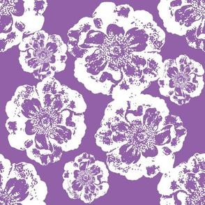 White Flowers on Purple