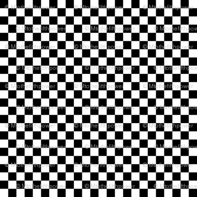 Quarter Inch Black and White Checkered