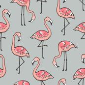 Flamingos on Grey
