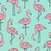 Flamingos Pink on Mint Green