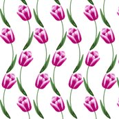 Rstripr-from-tulip-wreath-from-circle-of-brushes-made-from-16-color-naked-tulip1_shop_thumb