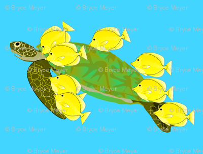 Green Sea Turtle and Yellow Tangs
