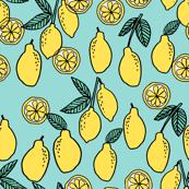 lemon // summer fruit citrus food fruits
