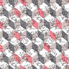 bunnybox_pink