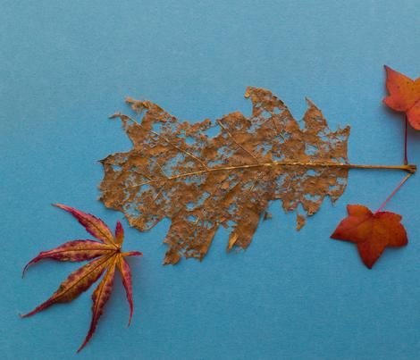 leaf_300 fabric by karralynn on Spoonflower - custom fabric