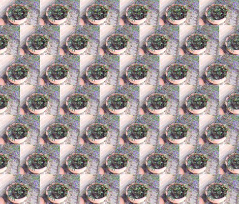 Potted Beetroot (Ref. 4718) fabric by rhondadesigns on Spoonflower - custom fabric