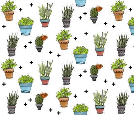 Rsucculents_with_plus_signs_shop_preview