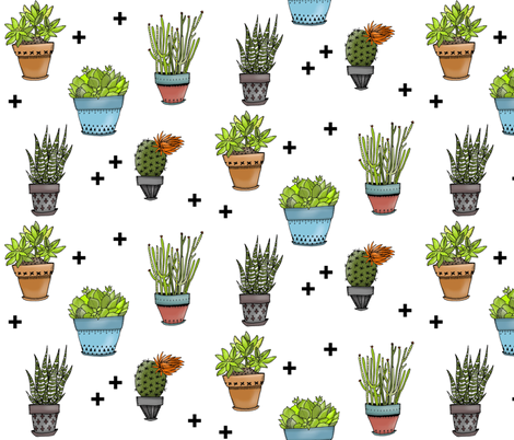 Succulents on White fabric by taraput on Spoonflower - custom fabric