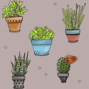 Succulents + Hearts