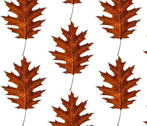 Red Oak Leaf fabric by littlebirdieme on Spoonflower - custom fabric