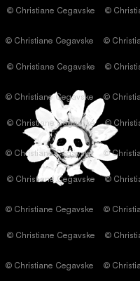 Skull Daisy on Black
