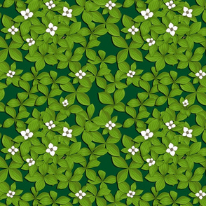 Miniature Dogwood Forest - green background