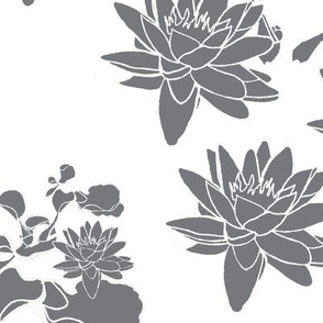 Water Lily print gr on  wh
