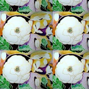 white_poppy_for_peace_by_geaausten-d9fjgpd_d