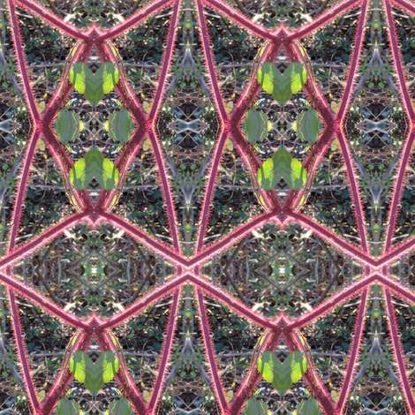 IMG_3477b fabric by leroyj on Spoonflower - custom fabric