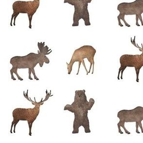 Bear Moose Stag No Arrows