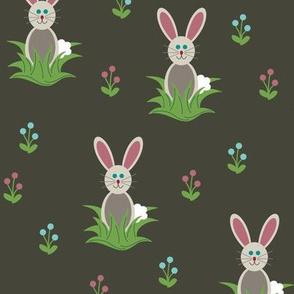 Oatmeal the Bunny