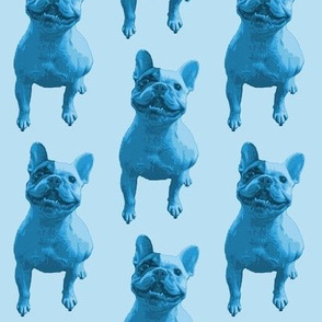 Bertie - Blue