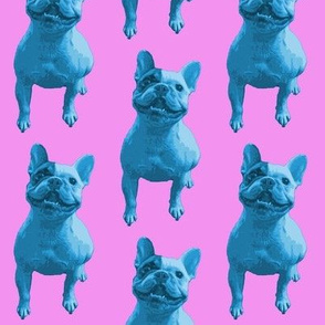 Bertie Two-tone - Blue and Pink
