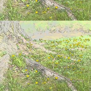 tree and dandelions