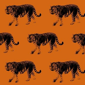 Tiger Prowl on Orange // Medium