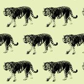 Tiger Prowl - Olive