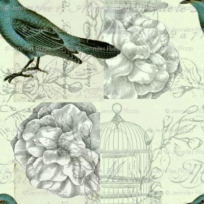 Correspondence bird