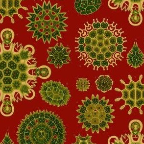 Christmas Haeckel Red