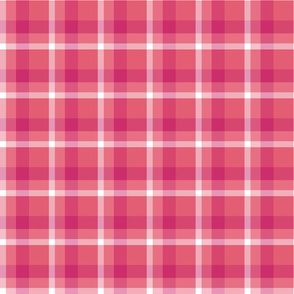 Magenta Plaid Pi Coordinate