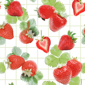 Strawberry Summer with basil tartan