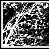 Tree Birds on Black