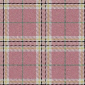 Spring Easter Plaid Pink