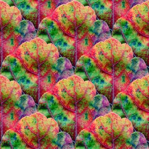 Leaf Scale 1