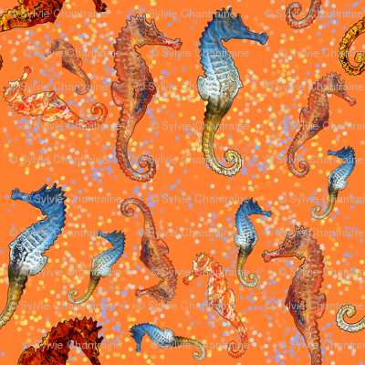 SEAHORSES BALLET ORANGE ANIMALS  NAUTICAL HIPPOCAMPUS SEA HORSE